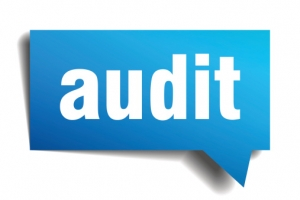 CMS Employer Subsidy Audits by Phone and/or Mail